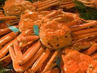 加能蟹(タグ付き)