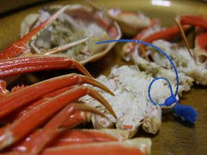 津居山ガニ★茹でガニはあっさりと美味しいです。お召し上がり易い様、包丁を入れさせて頂きます。