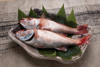 人気のお魚「のど黒」を丸ごと焼きます