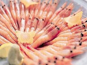【別料理】甘エビお刺身盛り
